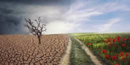 Le dérèglement climatique : la calamité qui aggrave toutes les autres