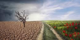 Loi climat européenne : un essai qui reste à transformer